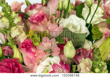 Various Flowers Close