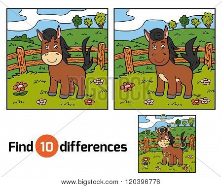 Find Differences (horse And Background)