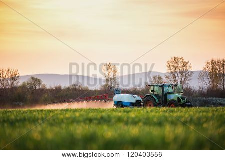 Tractor spraying wheat field with sprayer sunsetshot
