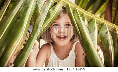 Young Smiling Girl Is Hiding Under The Palm Tree.