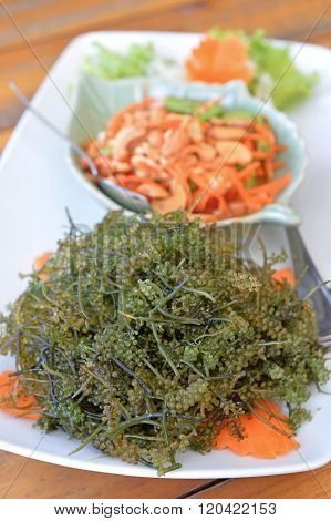 Sea Grapes Seaweed