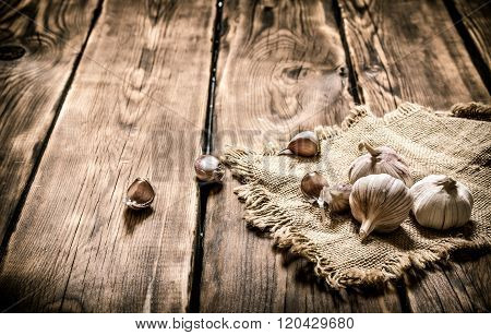 Garlic On A Old Sack. On Wooden Background.