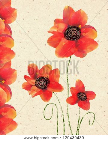 Floral card of isolated red poppy on decorative paper background.  Poppy Flower for Remembrance Day.