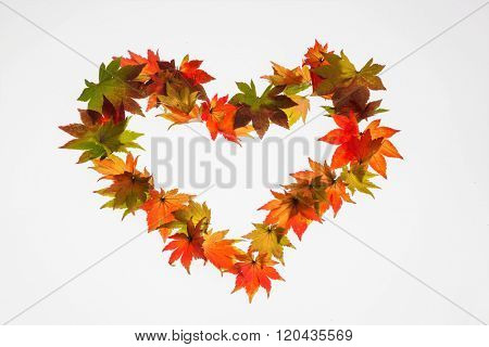 colorful autumn leaves in heart shape