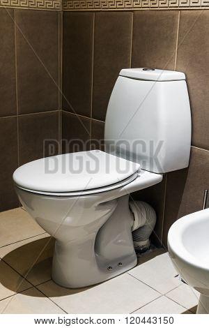 Closeup Of Toilet
