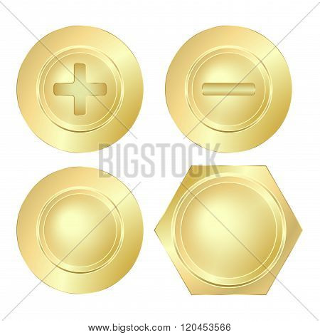 vector set of golden screws bolts and rivets