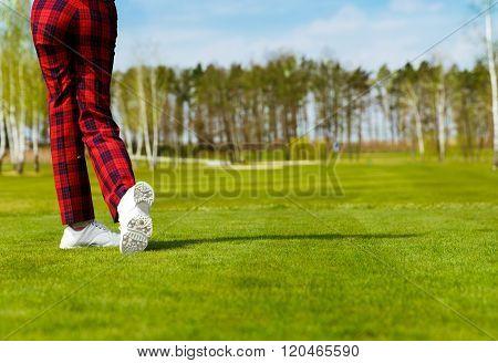 woman golfer, back view