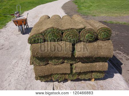 Grass On A Pallet