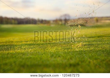 grass splash on golf course
