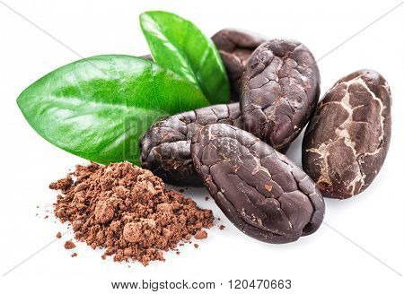 Cocao beans isolated on a white background.