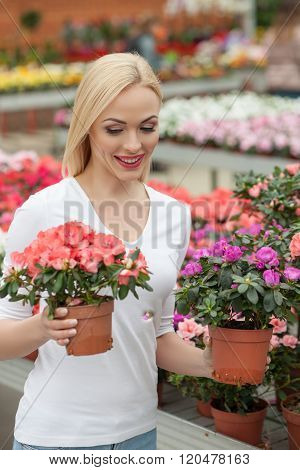 Cute blond lady is choosing plant in shop