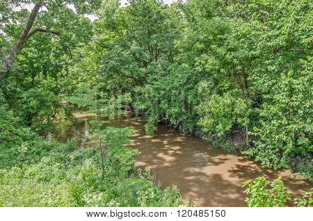Muddy Water And Overhanging Trees
