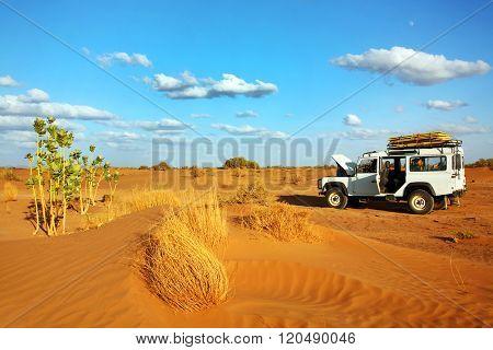 MOROCCO - OCTOBER 27, 2015 : Safari in Sahara Desert, Morocco, Africa