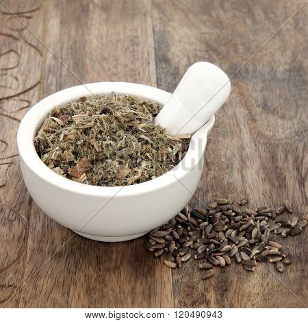 Blessed and milk thistle herb seeds used in natural alternative herbal medicine with mortar and pestle over old wood background.