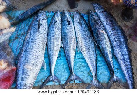 Ocean Tuna sold in the fishing village