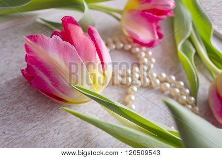 Beautiful Composition With Three Red Tulips And Pearl Necklace, Composed In The Form Of Eight