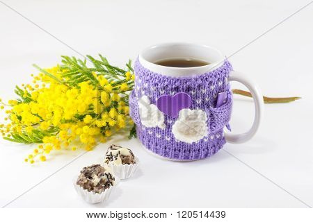 Winter Cup Of Tea And Mimosa Flowers