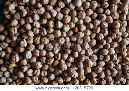 Grain Chickpea