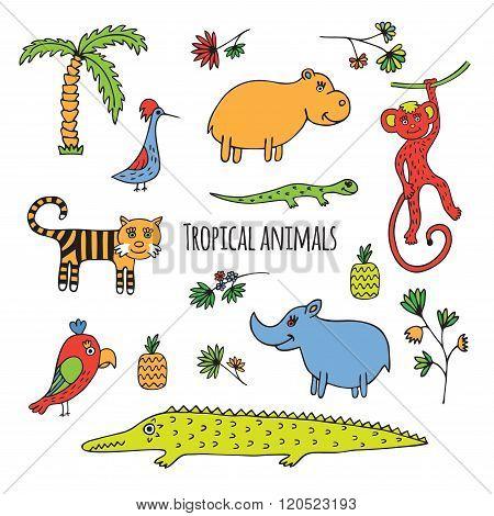Tropical animals sketch
