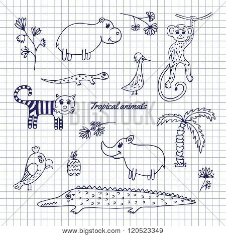 Hand-draw tropical animals
