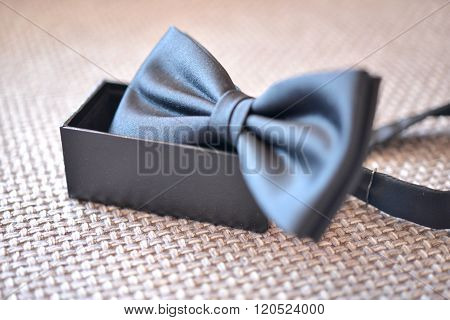 Blue Bow Tie With Placed In The Holder