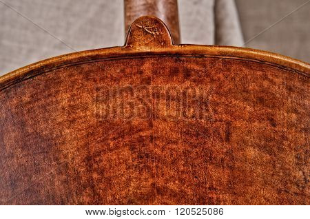 Close Up Of A Violoncello Back