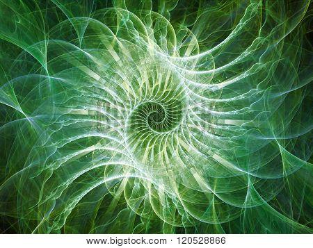 Way Of Spiral Pattern