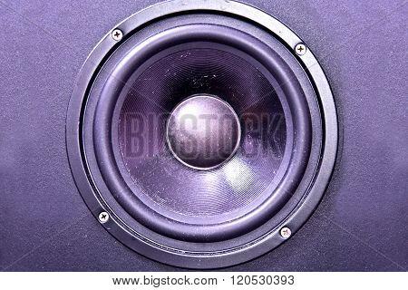 Speaker Membrane.
