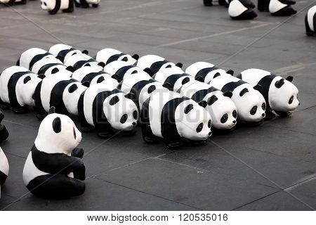 1600 Pandas+ World Tour in Thailand