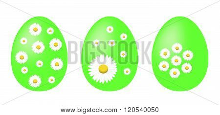 Set of green painted Easter eggs decorated with daisy flowers