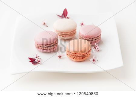 French sweet delicacy macaroons cookies colorful variety on a plate with spring blossom top view.
