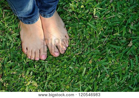 Bare Foot On Green Grass