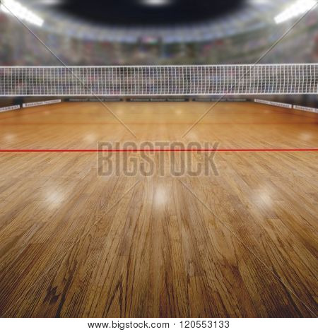Volleyball Arena With Spectators And Copy Space