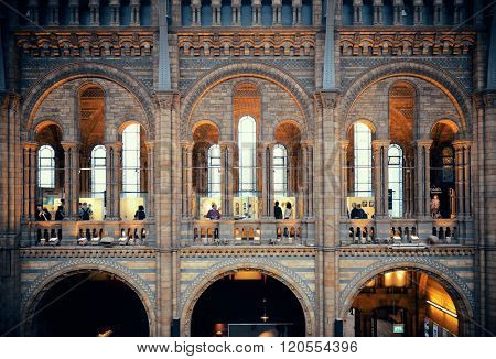 LONDON, UK - SEP 26: Natural History museum interior on September 26, 2013 in London, UK. It is Europe's tallest Ferris wheel and the most popular paid tourist attraction in UK