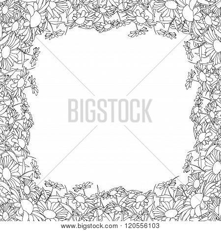 Wild Chrysanthemum Line Frame