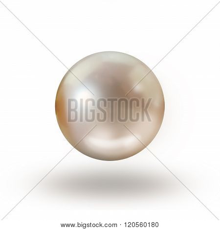 Single cream peach pearl isolated on white background with drop shadow