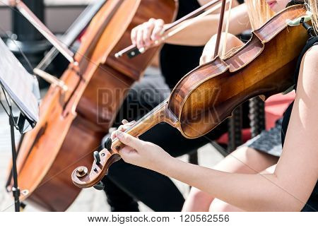 Musicians Play Classical Music In Orchestra