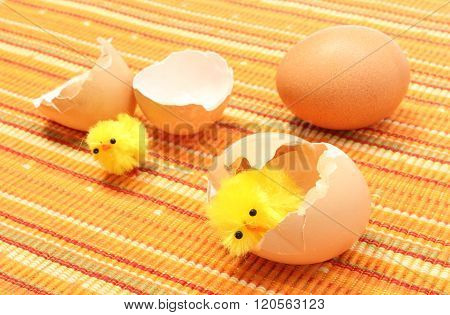 Easter Chickens With Broken Eggshell And Fresh Egg