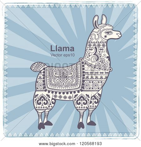 Alpaca Llama animal with ethnic ornaments