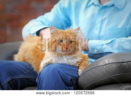Sitting man holding a fluffy red cat