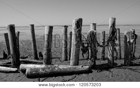 Poles By The Seaside