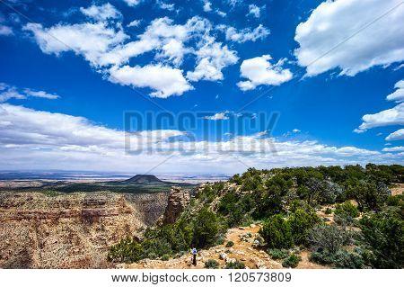U.S.A., Arizona, panorama of the Grand Canyon South Rim with a cloudy sky.