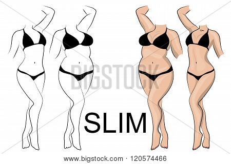 illustration of female slender figure and thick