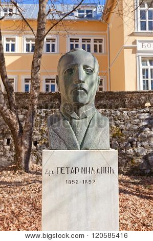 Monument To Doctor Petar Milanic In Cetinje, Montenegro