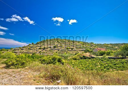 Old Stone Walls And Village On Vis