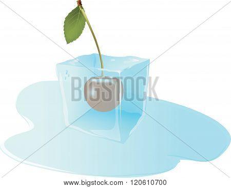 fruit frozen cherry in ice cube