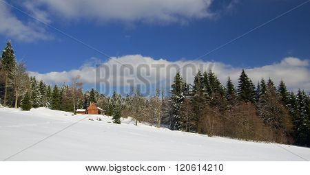 Wooden cottage for rent in mountain resort in forrest