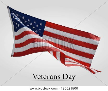 Flag America on Veterans Day - vector illustration.