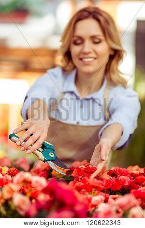 Woman In Orangery