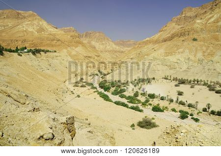 Natural desert landscape at the dead sea area. Israel. ** Note: Visible grain at 100%, best at smaller sizes